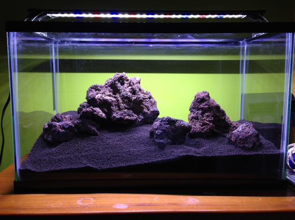 Ricardo's Aquascape pre plants